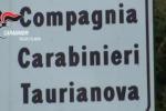 Piantagione Taurianova, il video dei carabinieri