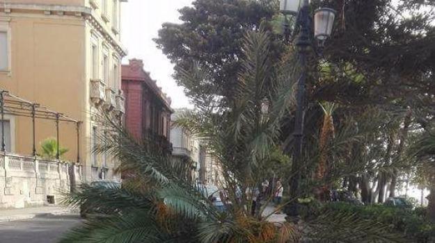 lungomare reggio, palma, Reggio, Archivio