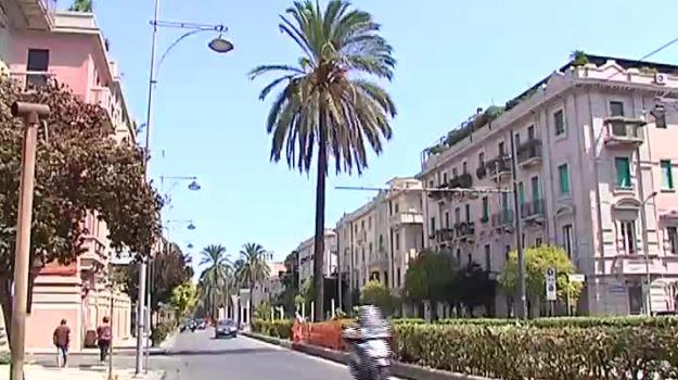 isola pedonale, messina, via dei mille, viale san Martino, Dafne Musolino, pippo scattareggia, Messina, Sicilia, Cronaca