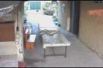 Omicidio a Palagonia, ecco il video con il killer