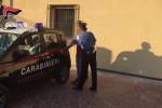 Marijuana, due in manette a Gioia Tauro / Video