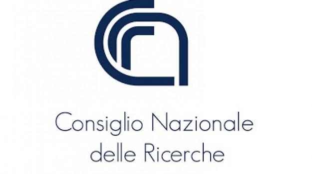 cnr, cosenza, firenze, protesta, Cosenza, Archivio