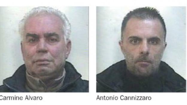 arresto, carmine alvaro, reggio calabria, sinopoli, Reggio, Archivio