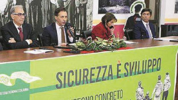 'ndrangheta, calabria, politica, Catanzaro, Calabria, Archivio