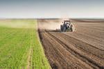 """Agroalimentare a Castrovillari, rinasce il """"Cammarata Forum"""" per tutelare il territorio"""