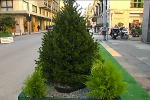 Messina, viale San Martino pedonale: lo chiedono 14 consiglieri comunali