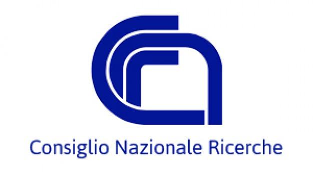 bando, cnr, laureati, palermo, Sicilia, Archivio