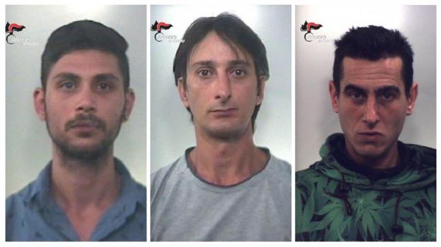 arresti, carabinieri, lamezia, motosega, Catanzaro, Calabria, Cronaca