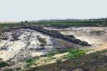 Dopo il maltempo l'area archeologica di Sibari è ancora sotto l'acqua