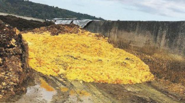 agrumi, metano, pastazzo, reggio calabria, Reggio, Archivio