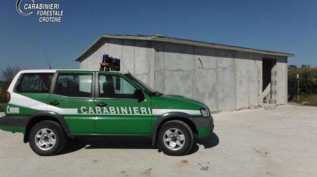 crotone, Catanzaro, Calabria, Archivio
