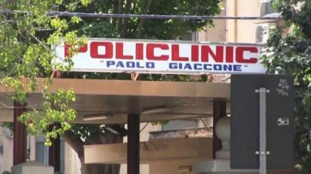 palermo, policlinico, Sicilia, Archivio