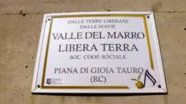 atto intimidatorio, Libera terra, Valle del Marro, Catanzaro, Reggio, Calabria, Archivio