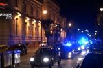 Traffico animali protetti, sette arresti dei carabinieri