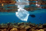 Plastiche nel mare, progetto del Cnr di Messina sull'impatto ambientale