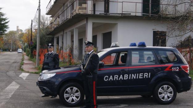 Antonella Procopio, cocaina, giuseppe fabiano, tegole, Catanzaro, Calabria, Archivio