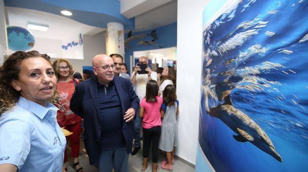 catanzaro, montepaone, museo della pesca e del mare, Catanzaro, Calabria, Archivio