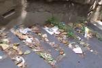 Trekking tra i rifiuti