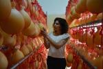 Chiara, da hostess a host in fattoria