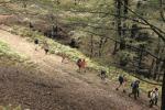 Sentiero del Brigante, l'Aspromonte che incanta