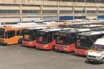 Atm, ecco i nuovi bus