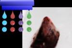 Rappresentazione grafica della tecnica si stampa 3D basata sulla deposizione di bio-inchiostri (fonte: Osaka University)