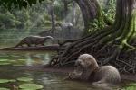 Ricostruzione artistica della lontra gigante Siamogale melilutra (fonte: Mauricio Anton)
