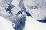 Artico, è record negativo dei ghiacci, mai così ridotti (fonte: NASA/LVIS TEAM)