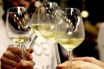 Douja d'Or Asti, premiati 283 vini italiani