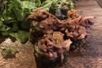 A Firenze arriva il sushi al lampredotto