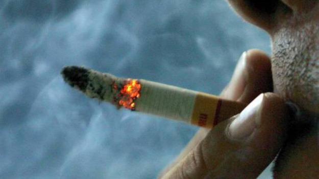 aria inquinata, malattie polmonari, R. Graham Barr, Stephen Holgate, Salute e Benessere