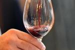 Ok Stato Regioni a decreto promozione vino all'estero