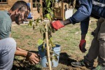 Cia, con Ong agricoltura motore di inclusione e cooperazione