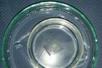 Un sottilissimo strato di polimero che galleggia su acqua, piegati sotto un vetrino con un peso senza lasciar passare l'acqua (fonte: Marco Vastano, BioFP)
