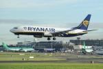 """Nuova politica sui bagagli a mano, l'Enac bacchetta Ryanair: """"Serve correttezza"""""""