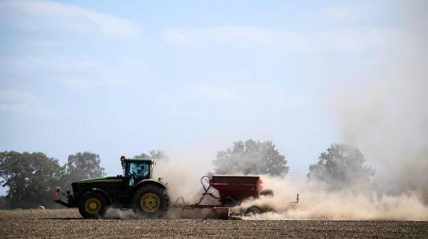 agricoltura calabria, pioggia, siccità, Reggio, Calabria, Economia