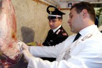Carabinieri agroalimentari, controlli in tutta Italia