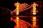 China Light-Festival at Cologne Zoo 46 installazioni luminose fino al 6 gennaio