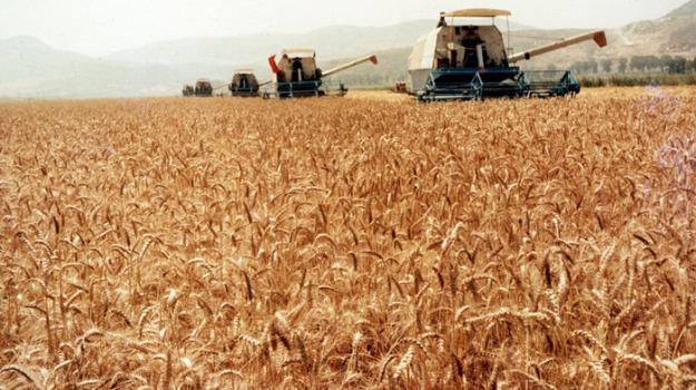 coldiretti calabria, fondi agricoltura, Calabria, Economia