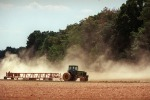Ismea mette all'asta 16mila terreni agricoli. C'è il bando, i criteri ed i requisiti. Tempo fino al 7 settembre