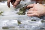 Cannabis, assolto malato che se la produce