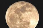 La superluna vista dai lettori