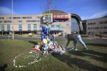 L'omaggio al piccolo Alfie fuori dall'ospedale
