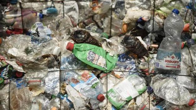 ordinanza del sindaco, plastic free, plastica, rende, Marcello Manna, Cosenza, Calabria, Politica