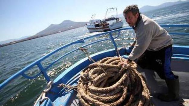 fondi regione sicilia pesca, Sicilia, Economia