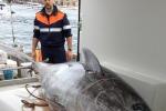 Centinaio, aumentano quote tonno rosso assegnate a Italia