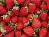 Agli italiani non piace più il sapore delle fragole, consumi ridotti di 3 mila tonnellate