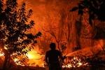 California brucia,è maggiore incendio nella storia Stato Usa