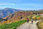 'Cammino nella Valle delle Abbazie'