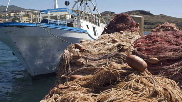 Pesca in Sicilia, pierluigi manca, sabina barresi, Silvano Giangiacomi, Tonino Genovese, Messina, Sicilia, Economia